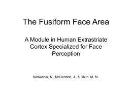 The Fusiform Face Area