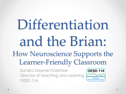 Differentiation and the Brian