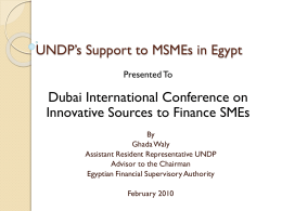 UNDP's Support to MSMEs in Egypt