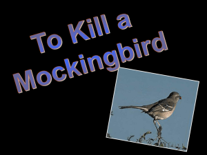 Wrote To Kill a Mockingbird in 1960 Based the story on her life
