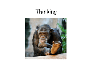 Thinking - AP Psychology Community