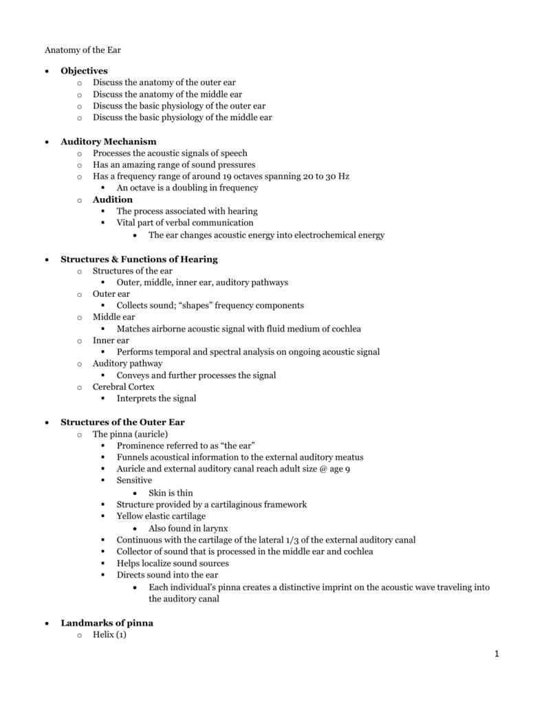 Anatomy Notes - My Professional Portfolio