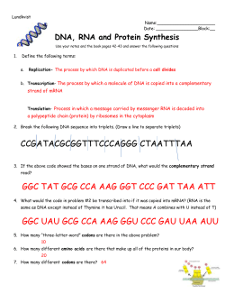 Worksheet Dna Rna And Protein Synthesis on Transcription And Translation Worksheet Answers