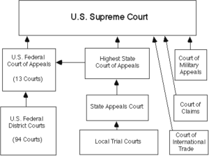 Local, State, Federal Courts