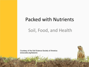 Soil, Food and Health