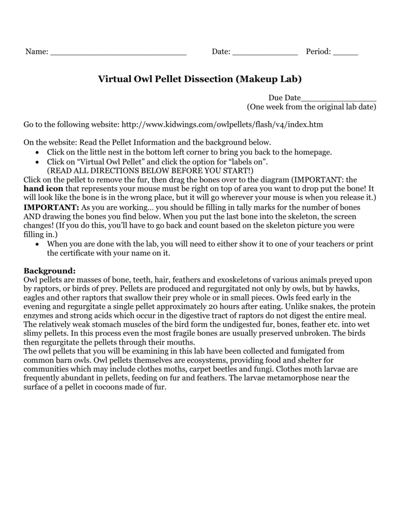 worksheet Virtual Owl Pellet Dissection Worksheet virtual owl pellet dissection makeup lab