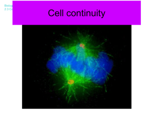 Cell continuity - Science at St. Dominics