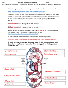 bypassing the pulmonary circuit