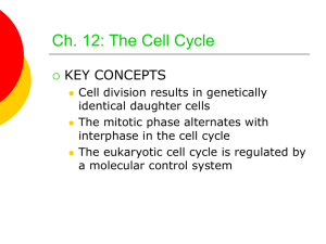 Ch. 12: The Cell Cycle