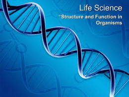 Life Science - WBR Teacher Moodle