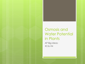 Osmosis and Water Potential in Plants