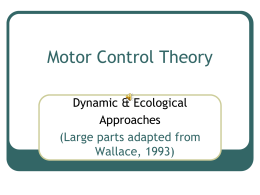 Motor Control Theory 1
