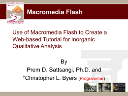 Use of Flash Macromedia to Develop Web