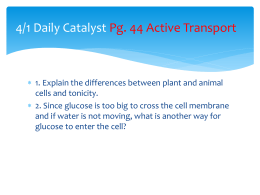 4/9 Daily Catalyst Pg. 39 Active Transport