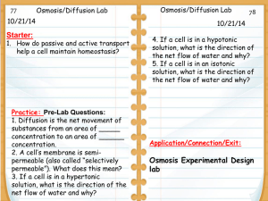 Cell Transport And Homeostasis Terms KEY