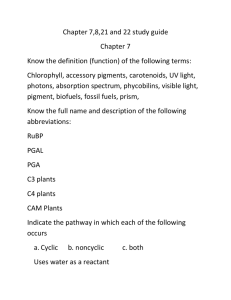 Chapter 7_8_21_22 Study Guide