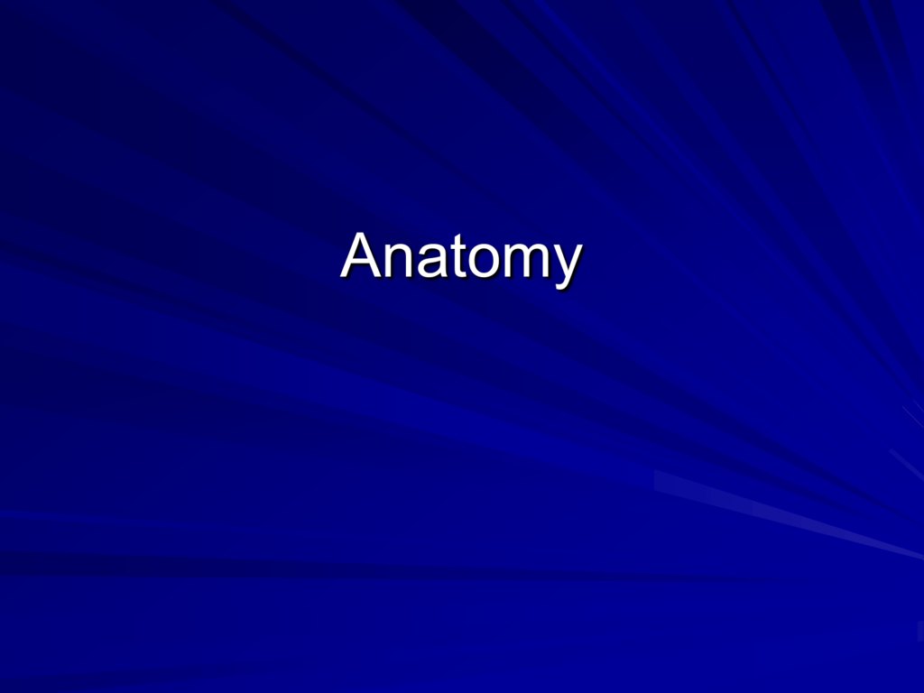 Application of Anatomy and Physiology