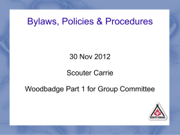 Bylaws, Policies and Procedures