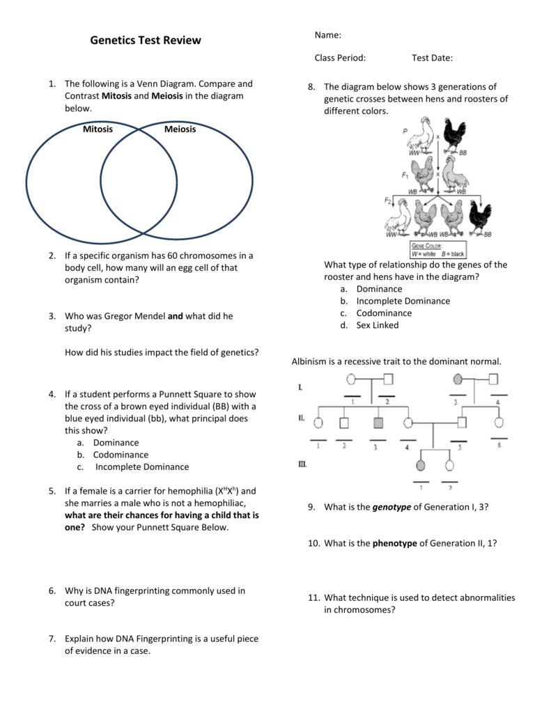 Venn Diagram Comparing And Contrasting Mitosis And Meiosis Kubre