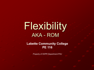 Introduction to Flexibility - The Red Zone
