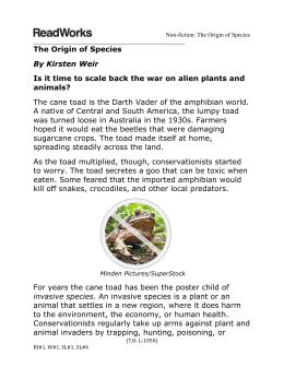 The Origin of Species-MS LS Pre-Assessment
