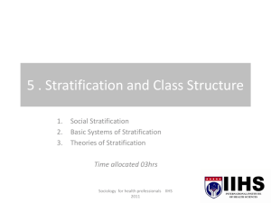 8. Stratification and Class Structure