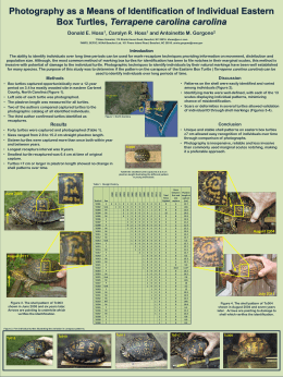 poster. - North American Box Turtle Conservation Workshop