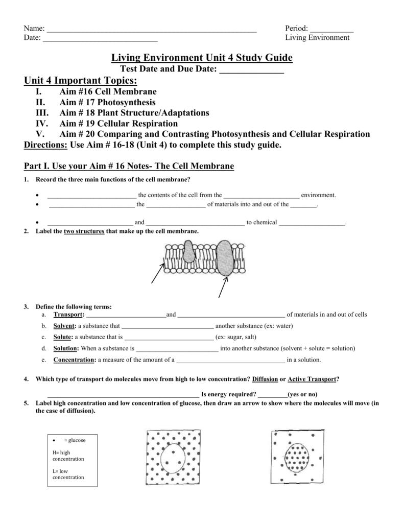 Unit 4 study guide manhasset public schools pooptronica