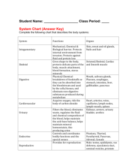 Body Sytem Chart Answer Key