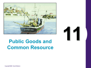 11 Public Goods and Common Resource