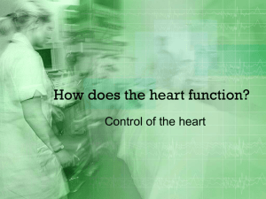 How does the heart function?