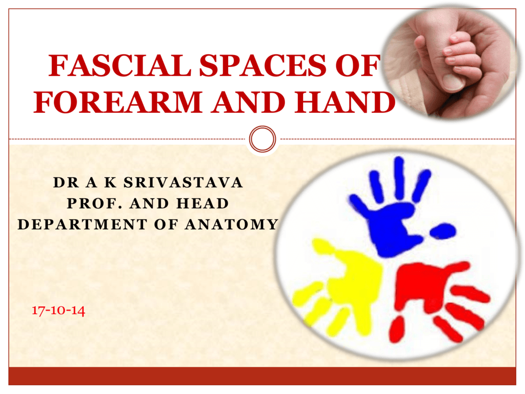 Fascial Spaces of Forearm And Hand 1