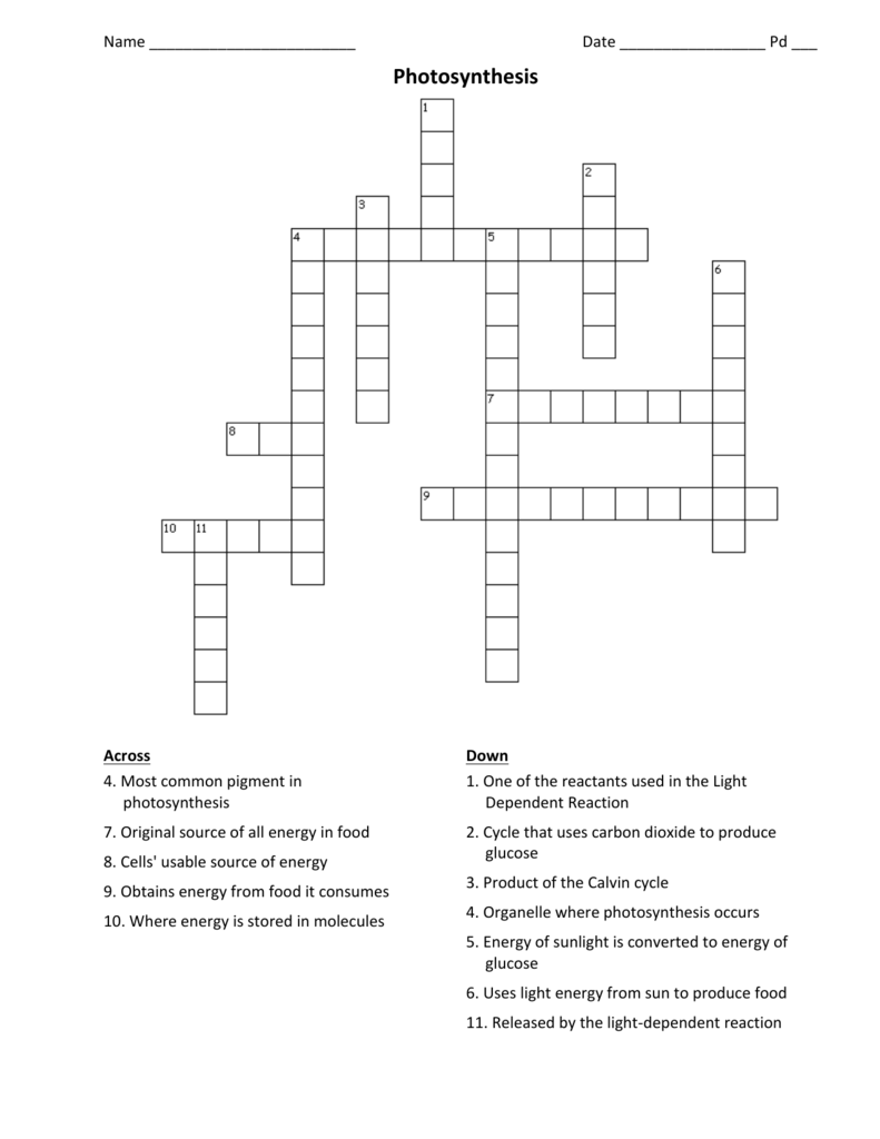 Cell Energy Crossword Puzzle