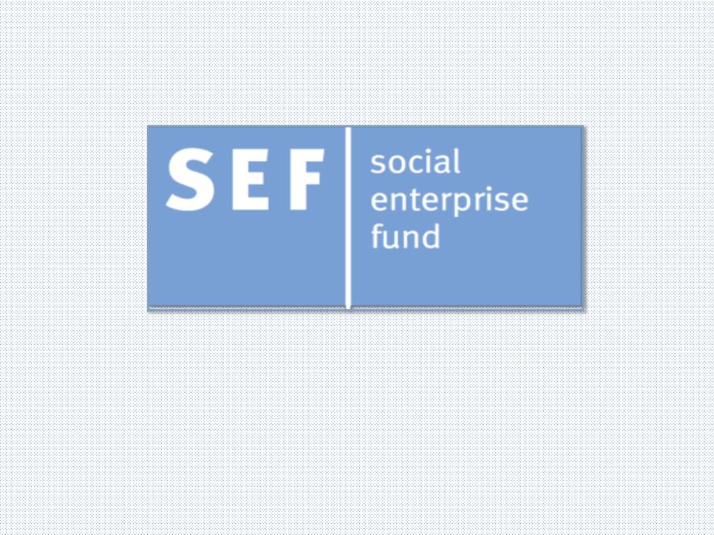 business  - Social Enterprise Fund