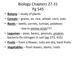 biology-notes-chapters-27-31