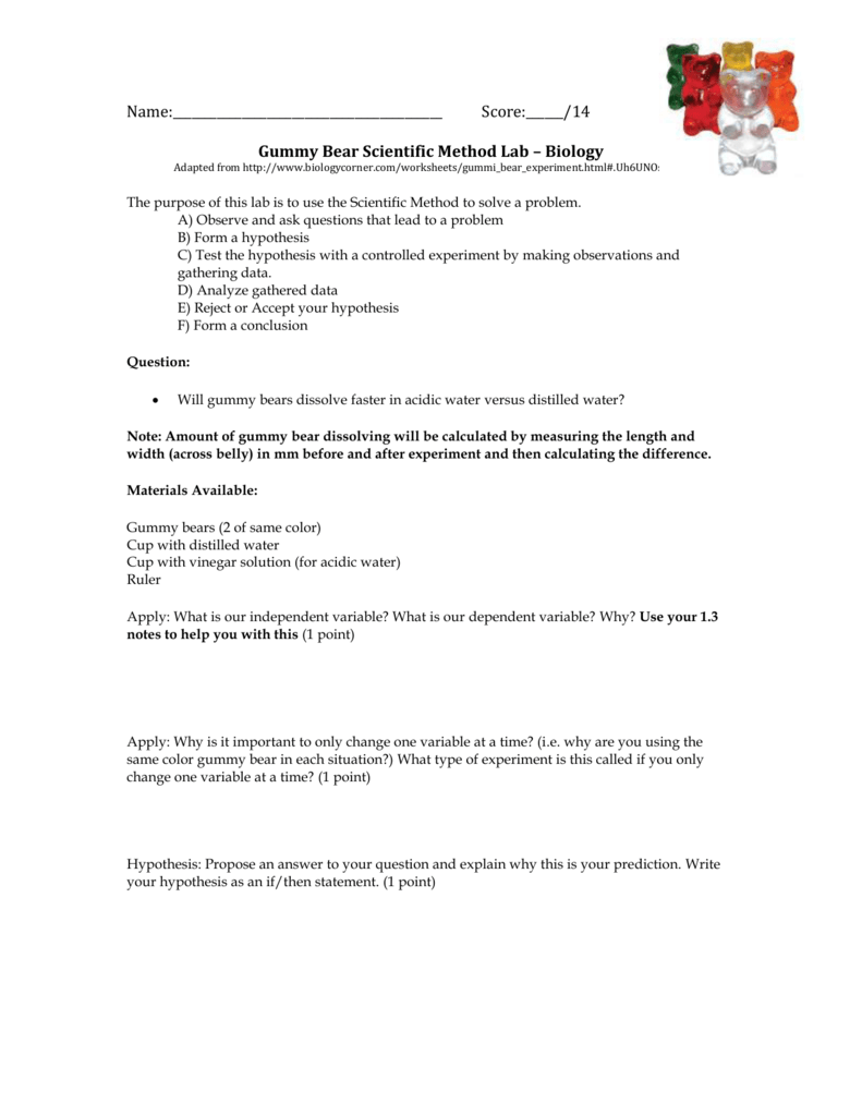 worksheet Gummy Bear Experiment Worksheet gummy bear scientific method lab biology