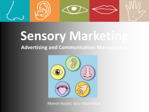 Sensory Marketing Advertising and Communication Management