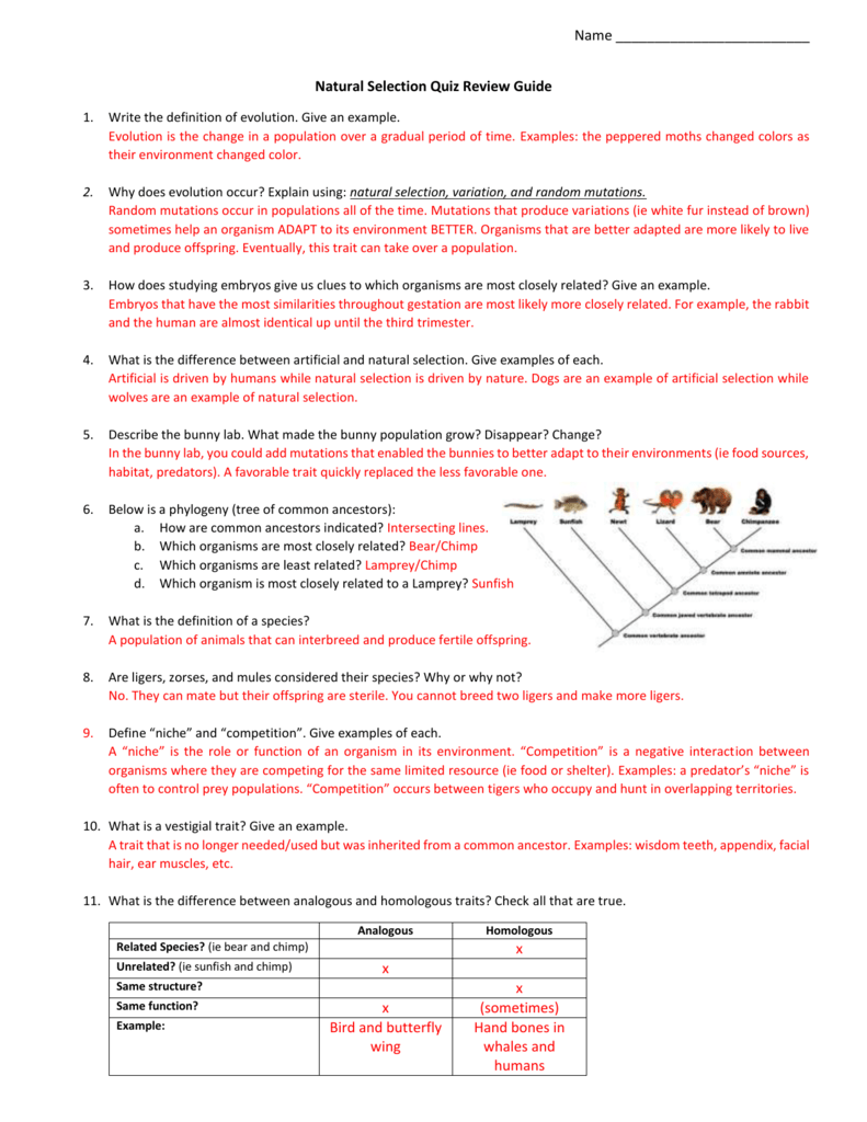 Natural Selection Quiz Review Guide Answer Key (2))