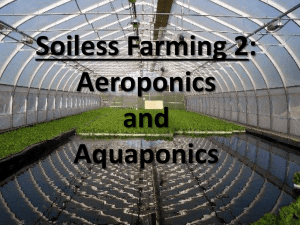 soilless farming Aquaponics