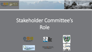 Stakeholder Role and AMP