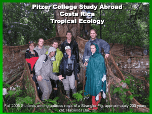Tropical Ecology Course Pictures