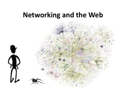 Networking and the Web