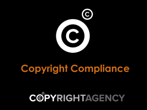 Copyright Info for Licence Holders