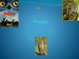 A Tale form Dimwood Forest Poppy Author Avi illustrator by Brian