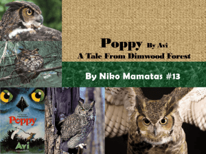 Poppy By Avi A Tale From Dimwood Forest