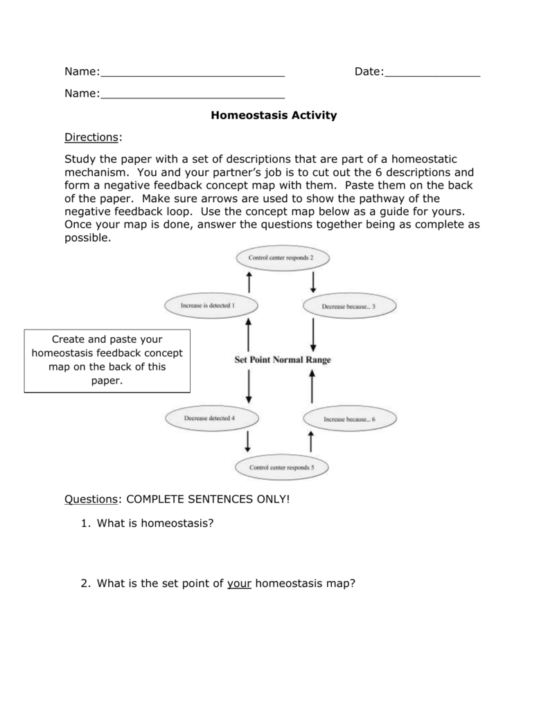 Homeostasis Activity