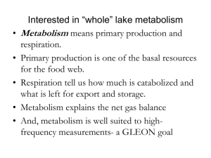"""Whole"" lake metabolism"