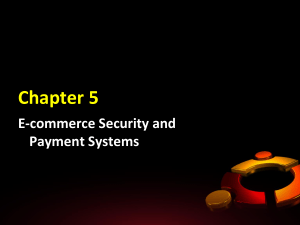 The E-commerce Security Environment