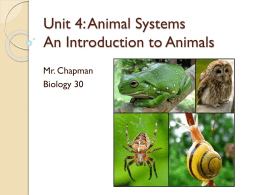 Animal Introduction Notes