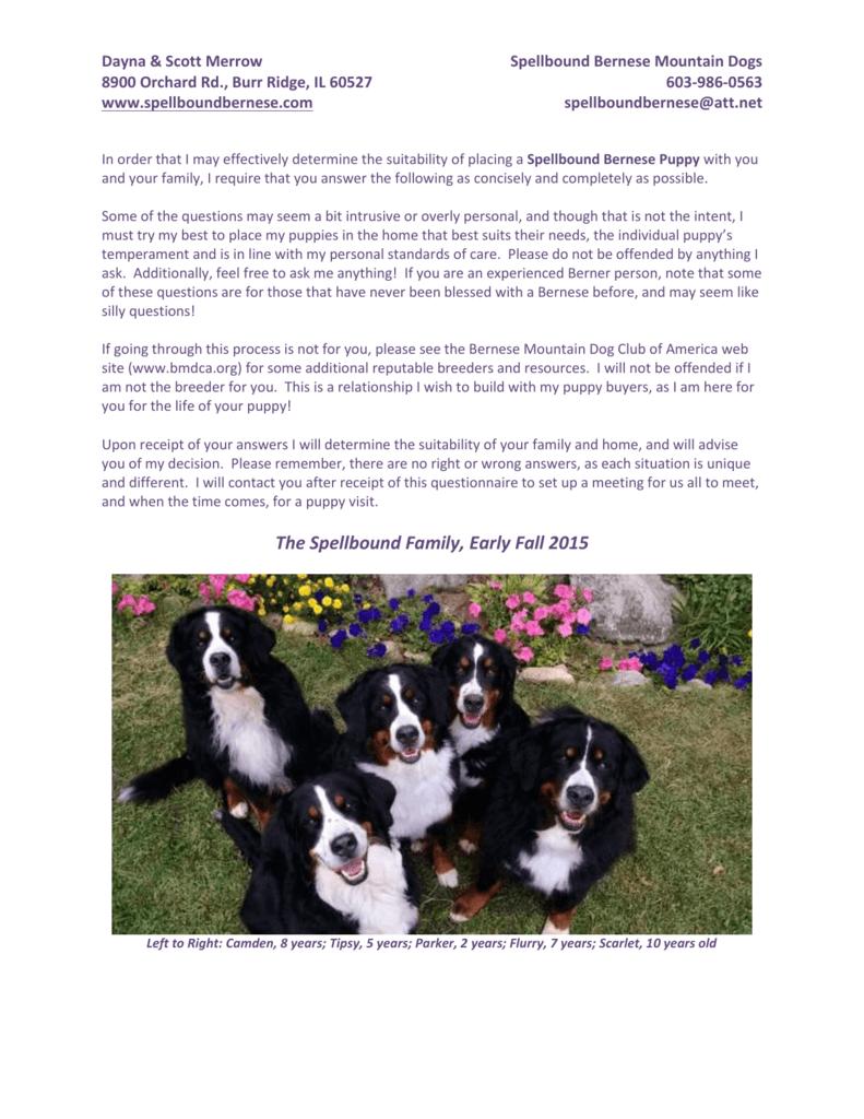 Spellbound Puppy Questionnaire